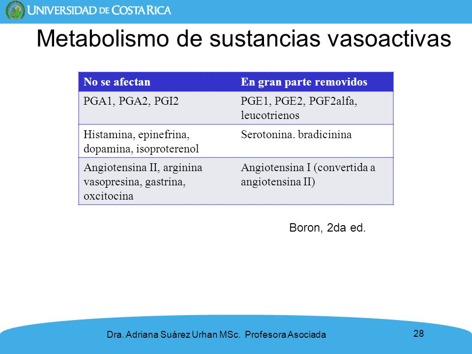 Metabolismo de sustancias vasoactivas