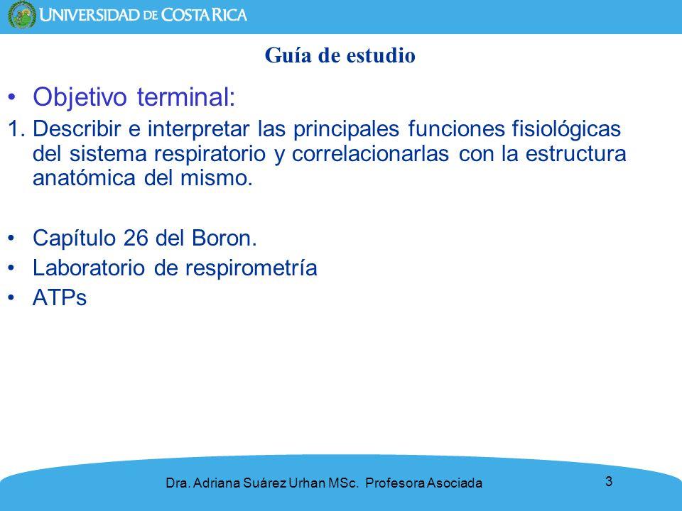 Objetivo terminal: Guía de estudio