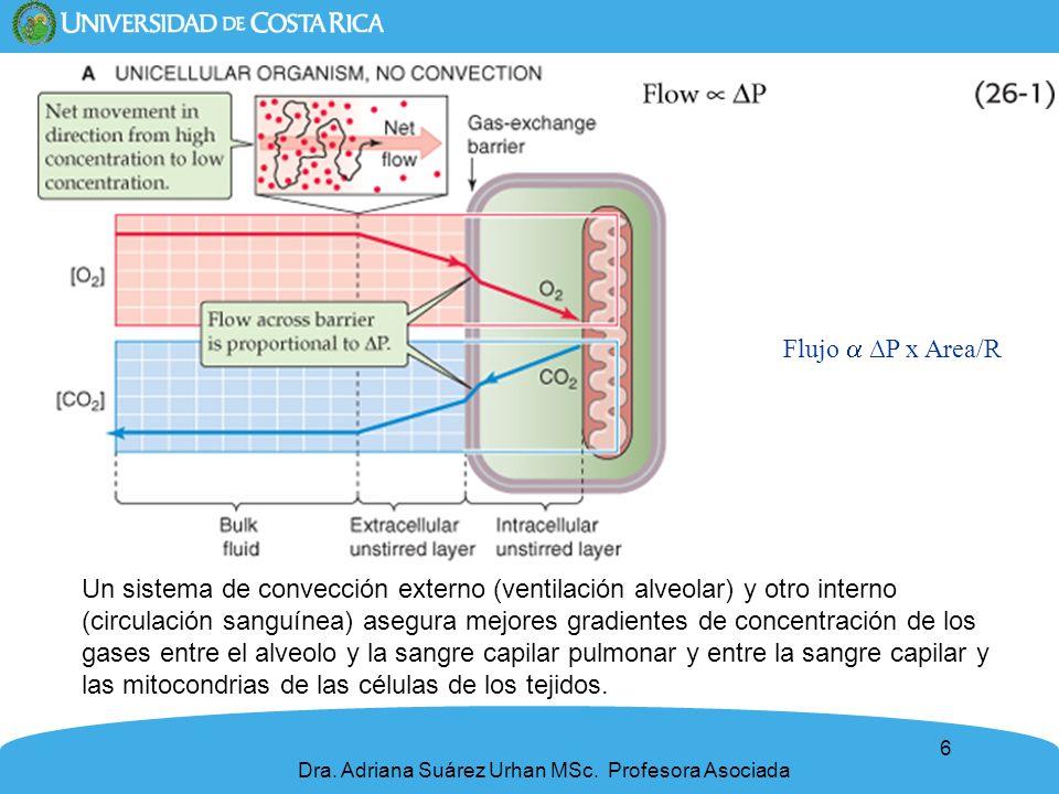 Flujo  ∆P x Area/R