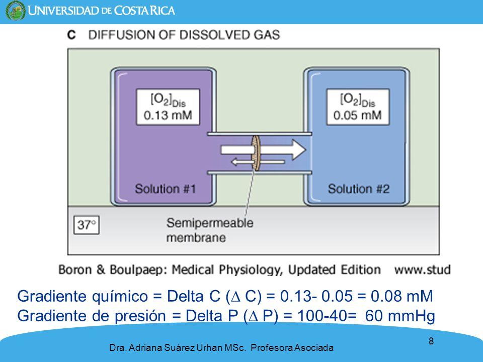 Gradiente químico = Delta C (∆ C) = 0.13- 0.05 = 0.08 mM