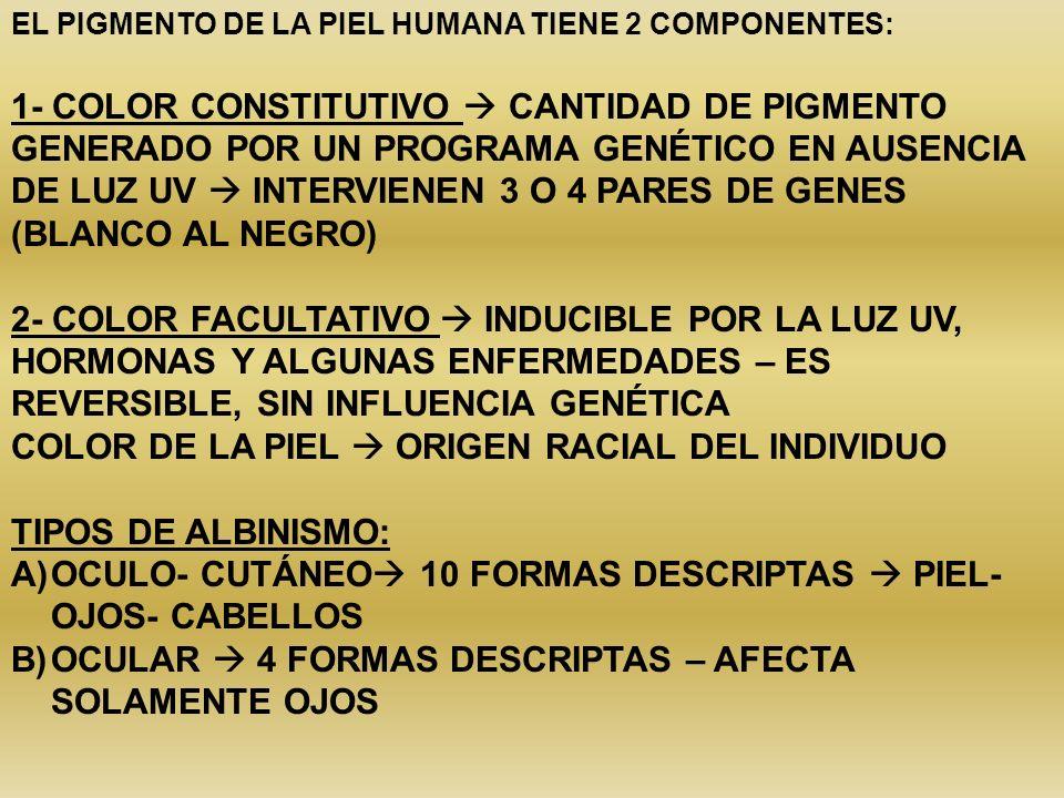 COLOR DE LA PIEL  ORIGEN RACIAL DEL INDIVIDUO TIPOS DE ALBINISMO: