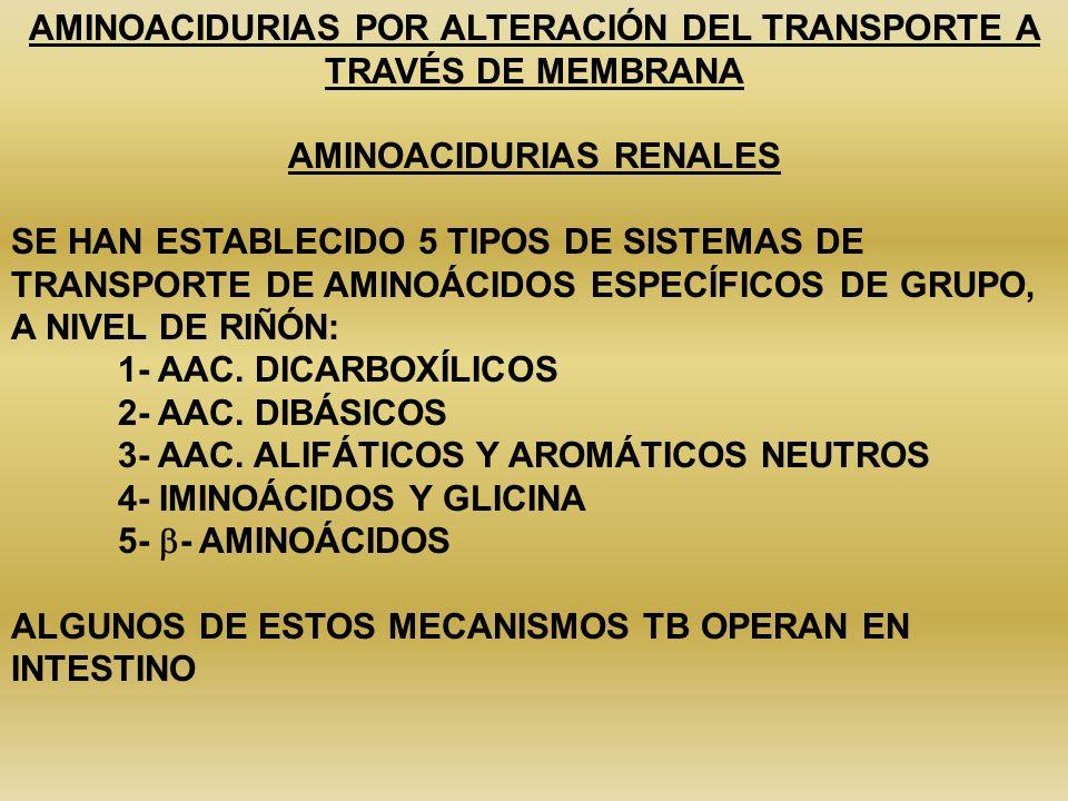 AMINOACIDURIAS POR ALTERACIÓN DEL TRANSPORTE A TRAVÉS DE MEMBRANA