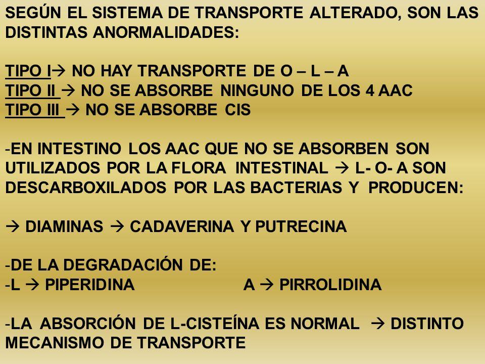 SEGÚN EL SISTEMA DE TRANSPORTE ALTERADO, SON LAS DISTINTAS ANORMALIDADES: