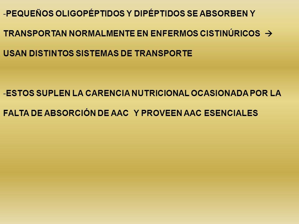 PEQUEÑOS OLIGOPÉPTIDOS Y DIPÉPTIDOS SE ABSORBEN Y TRANSPORTAN NORMALMENTE EN ENFERMOS CISTINÚRICOS  USAN DISTINTOS SISTEMAS DE TRANSPORTE
