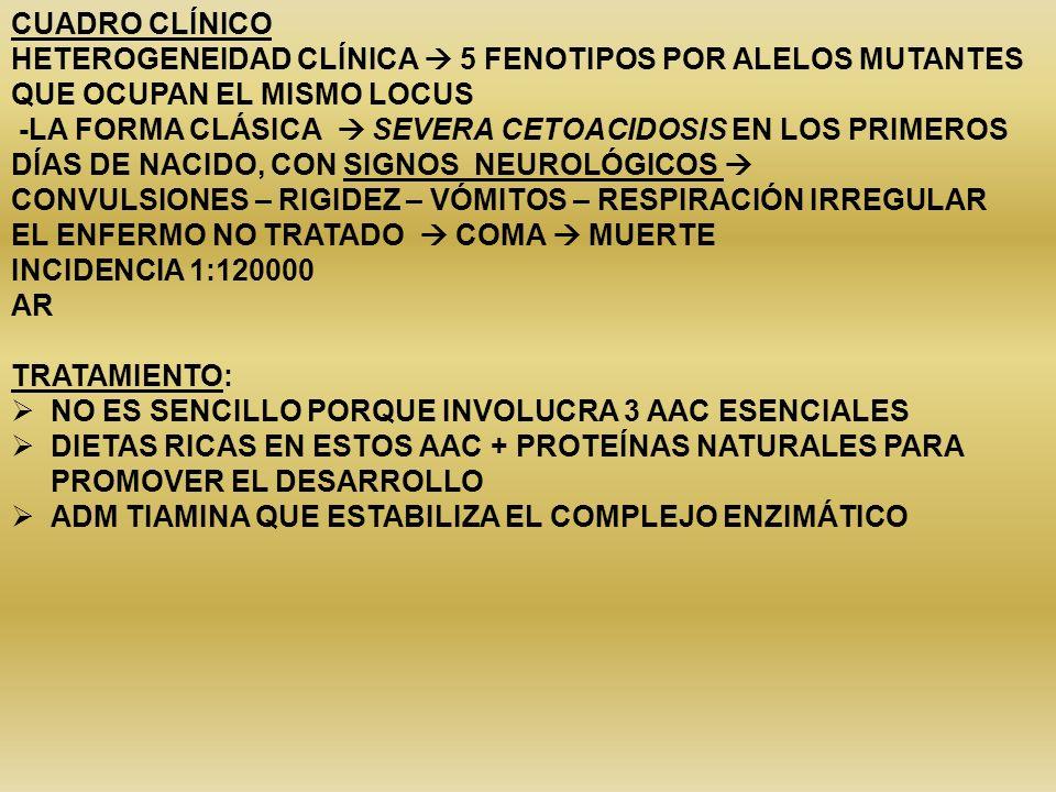 CUADRO CLÍNICO HETEROGENEIDAD CLÍNICA  5 FENOTIPOS POR ALELOS MUTANTES QUE OCUPAN EL MISMO LOCUS.