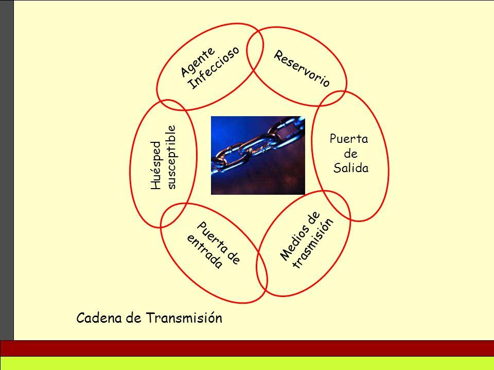 Cadena de Transmisión Agente Infeccioso Reservorio Puerta susceptible