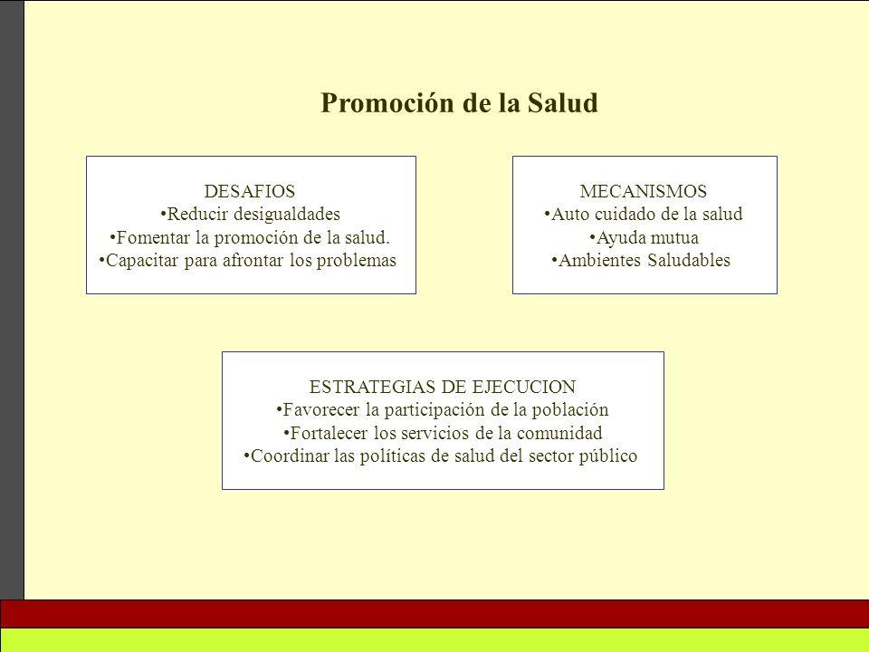 Promoción de la Salud DESAFIOS Reducir desigualdades
