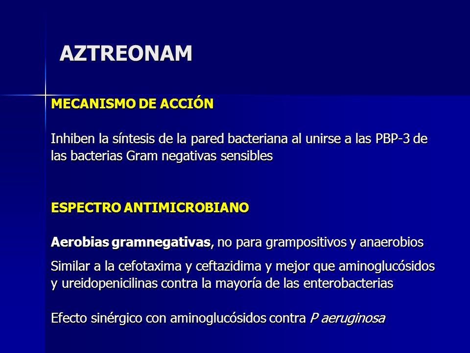AZTREONAM MECANISMO DE ACCIÓN