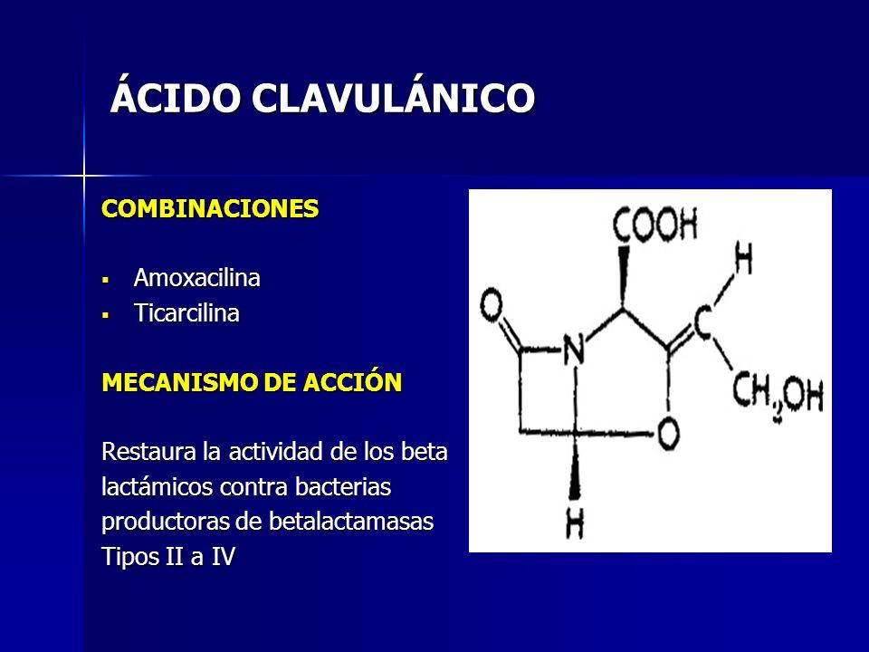 ÁCIDO CLAVULÁNICO COMBINACIONES Amoxacilina Ticarcilina
