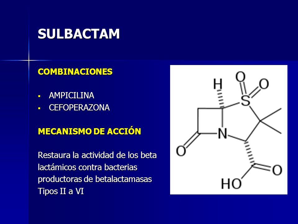 SULBACTAM COMBINACIONES AMPICILINA CEFOPERAZONA MECANISMO DE ACCIÓN