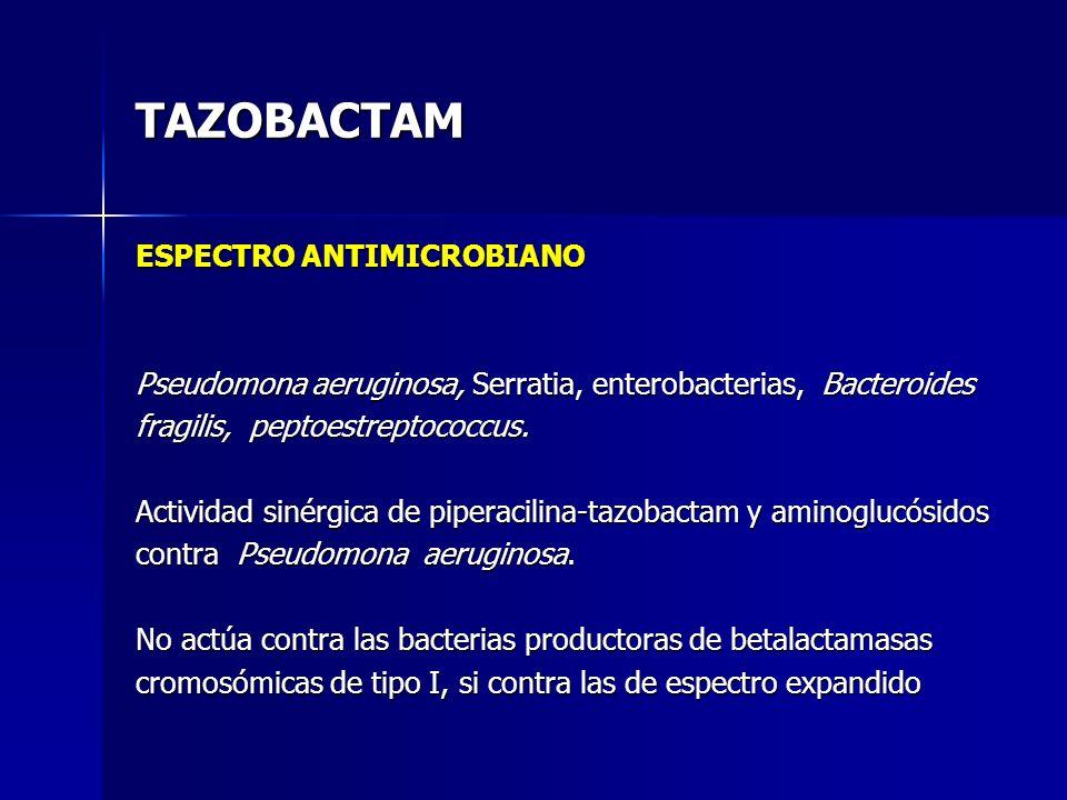 TAZOBACTAM ESPECTRO ANTIMICROBIANO
