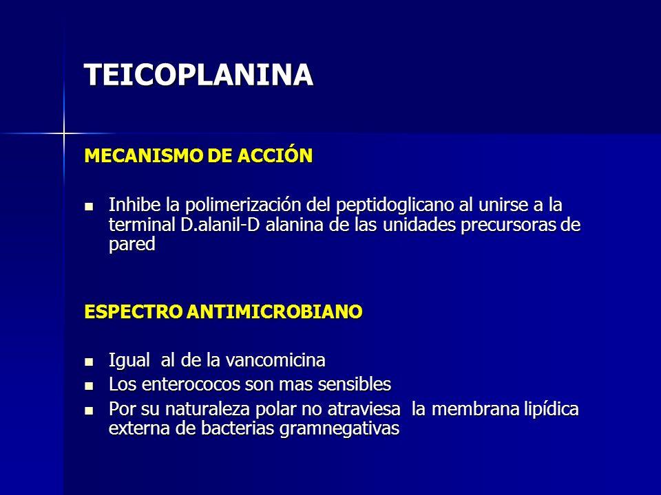 TEICOPLANINA MECANISMO DE ACCIÓN