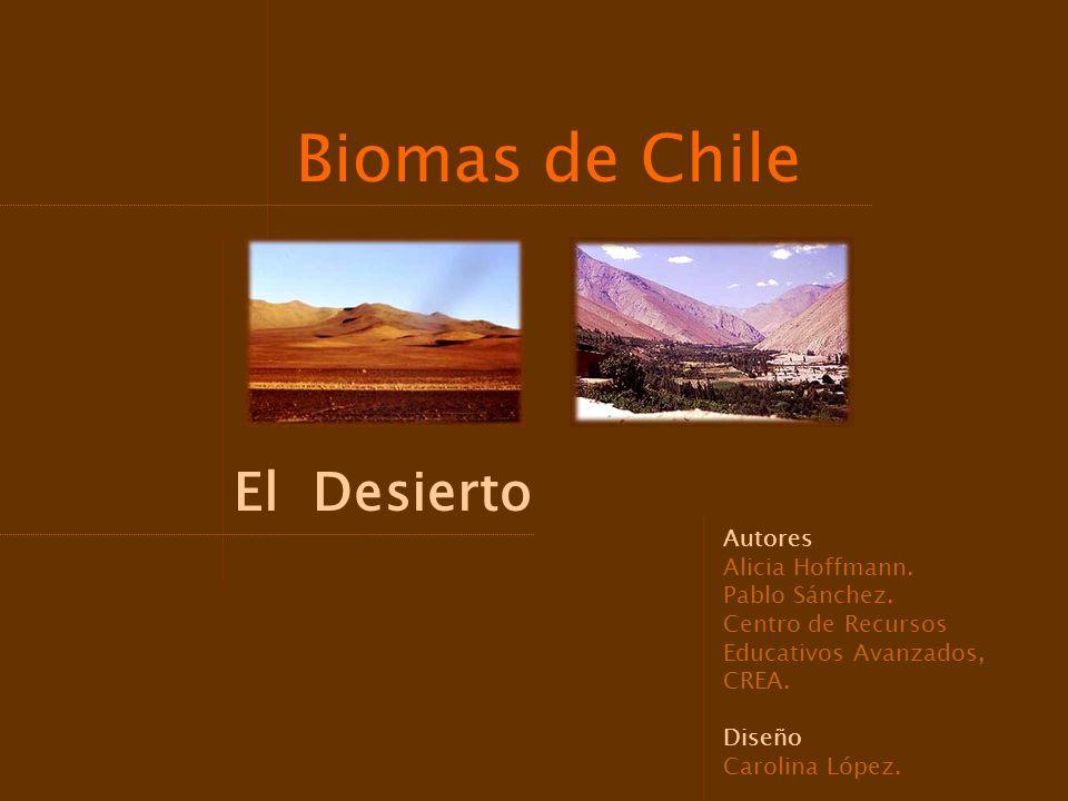 Biomas de Chile El Desierto Autores Alicia Hoffmann. Pablo Sánchez.