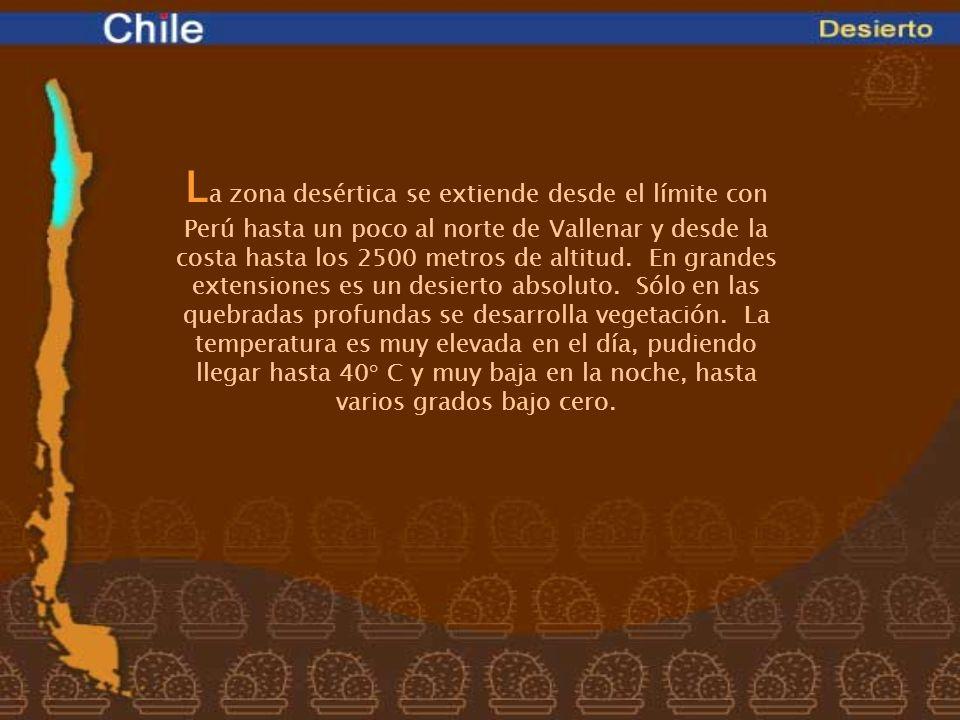 La zona desértica se extiende desde el límite con Perú hasta un poco al norte de Vallenar y desde la costa hasta los 2500 metros de altitud.