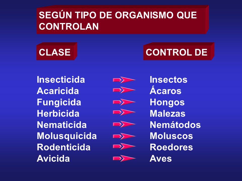 SEGÚN TIPO DE ORGANISMO QUE CONTROLAN