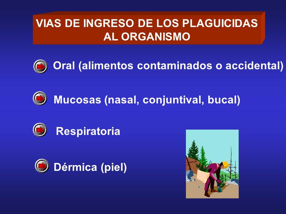 VIAS DE INGRESO DE LOS PLAGUICIDAS