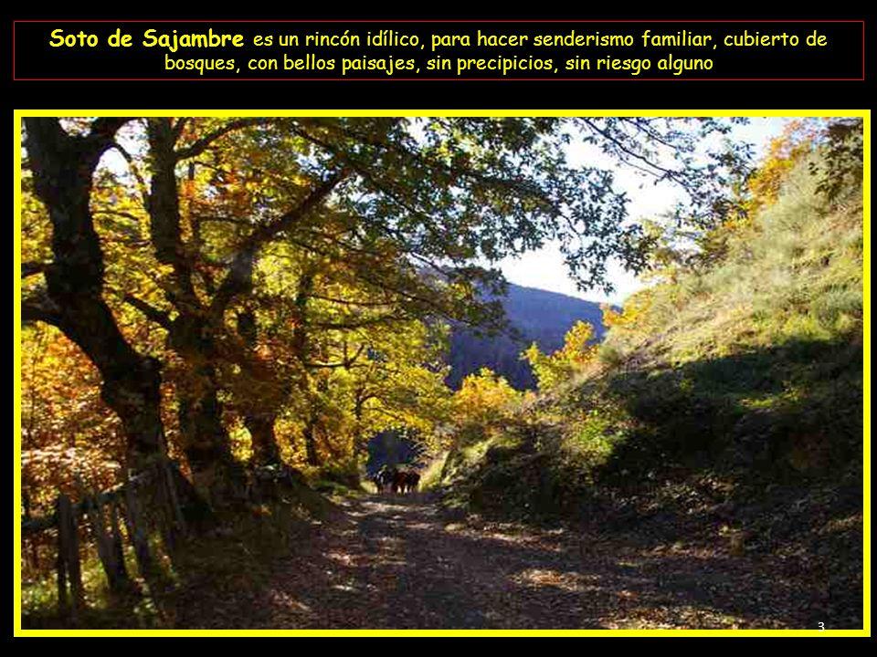 Soto de Sajambre es un rincón idílico, para hacer senderismo familiar, cubierto de bosques, con bellos paisajes, sin precipicios, sin riesgo alguno