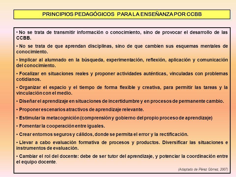 PRINCIPIOS PEDAGÓGICOS PARA LA ENSEÑANZA POR CCBB