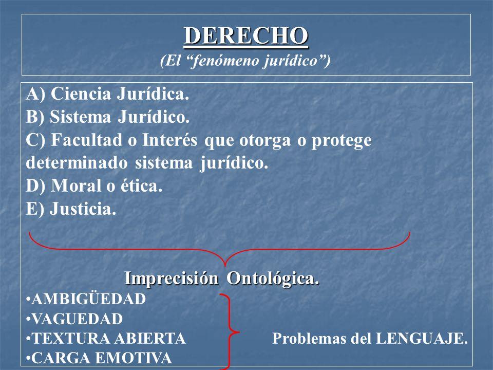 (El fenómeno jurídico )