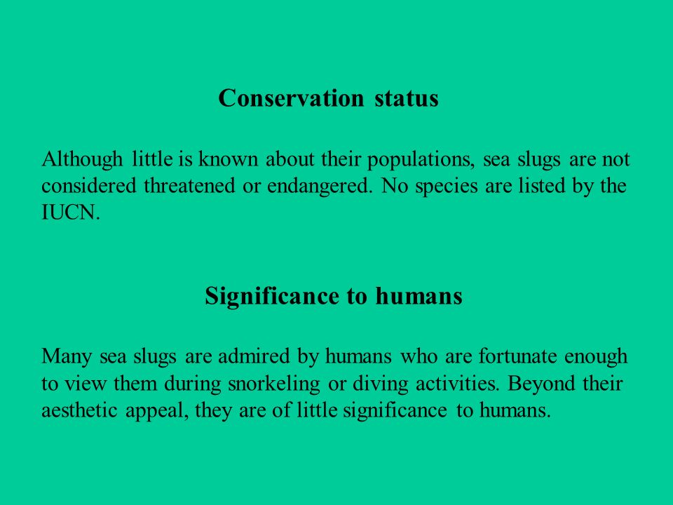 Significance to humans