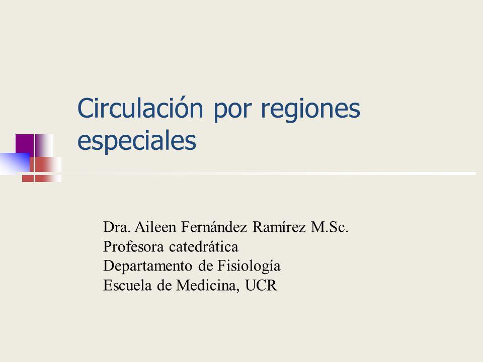 Circulación por regiones especiales
