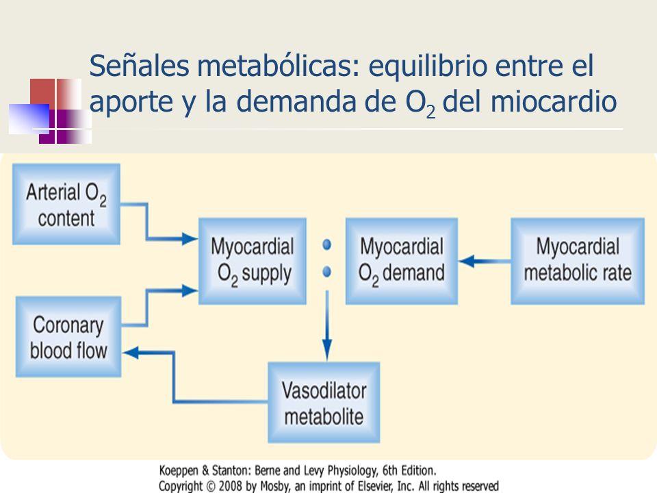 Señales metabólicas: equilibrio entre el aporte y la demanda de O2 del miocardio