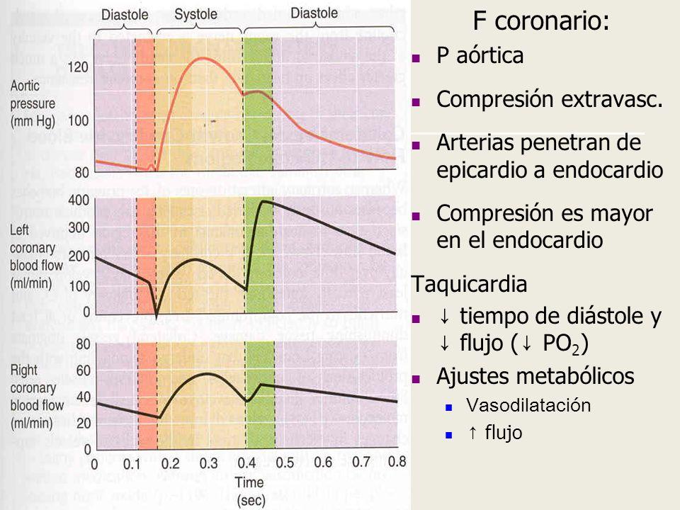 F coronario: P aórtica Compresión extravasc.