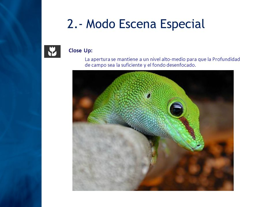 2.- Modo Escena Especial Close Up: