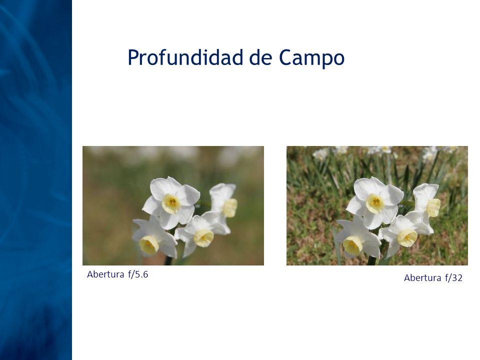 Profundidad de Campo Abertura f/5.6 Abertura f/32