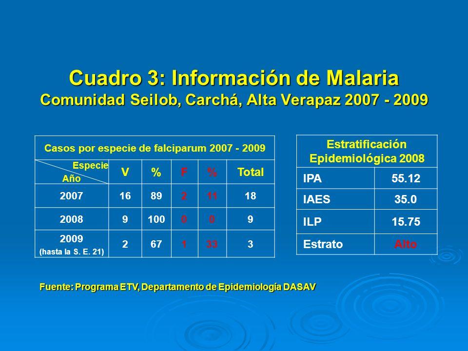 Cuadro 3: Información de Malaria Comunidad Seilob, Carchá, Alta Verapaz 2007 - 2009