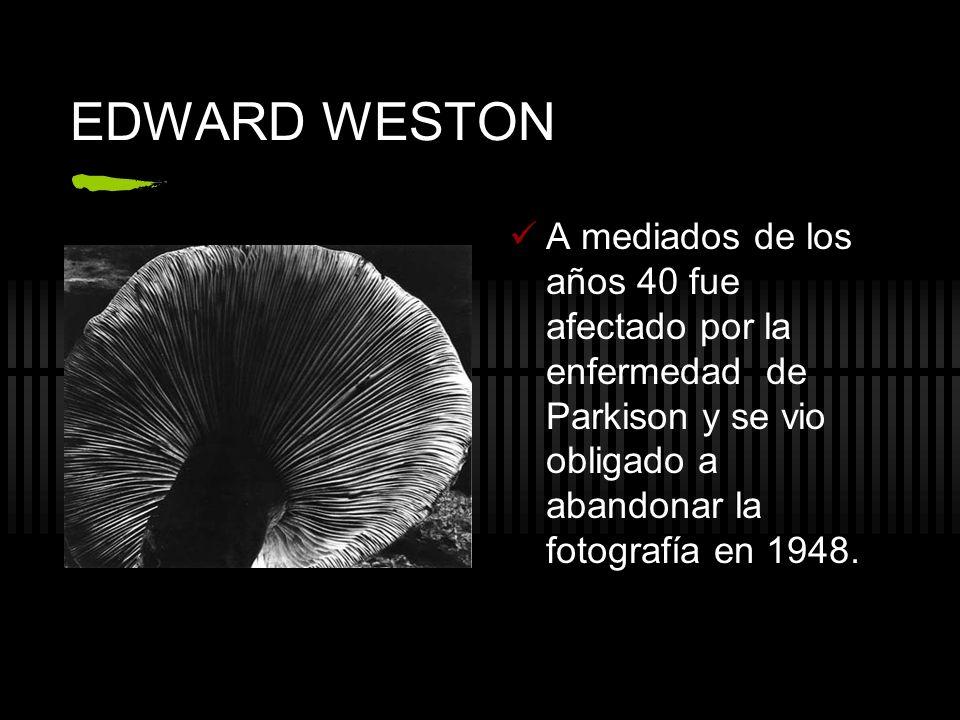 EDWARD WESTON A mediados de los años 40 fue afectado por la enfermedad de Parkison y se vio obligado a abandonar la fotografía en 1948.