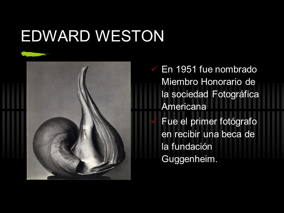 EDWARD WESTON En 1951 fue nombrado Miembro Honorario de la sociedad Fotográfica Americana.