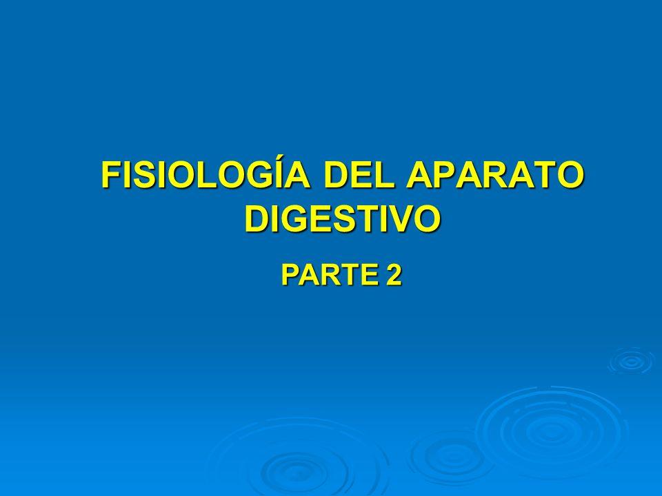 FISIOLOGÍA DEL APARATO DIGESTIVO