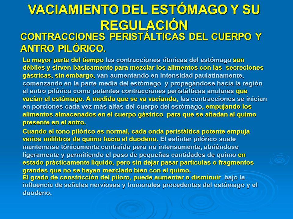 VACIAMIENTO DEL ESTÓMAGO Y SU REGULACIÓN