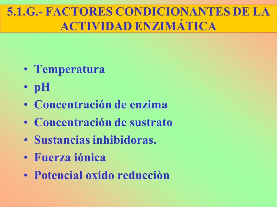 5.1.G.- FACTORES CONDICIONANTES DE LA ACTIVIDAD ENZIMÁTICA