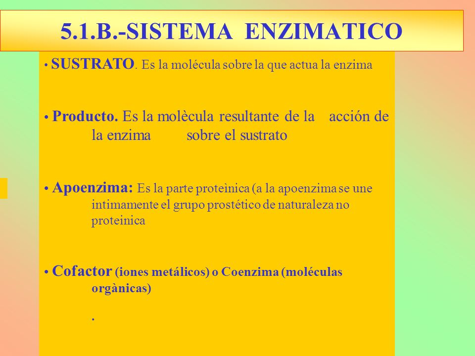 5.1.B.-SISTEMA ENZIMATICO • SUSTRATO. Es la molécula sobre la que actua la enzima.