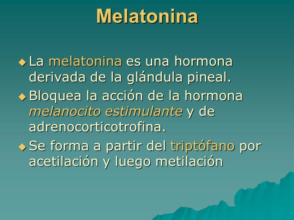 Melatonina La melatonina es una hormona derivada de la glándula pineal.