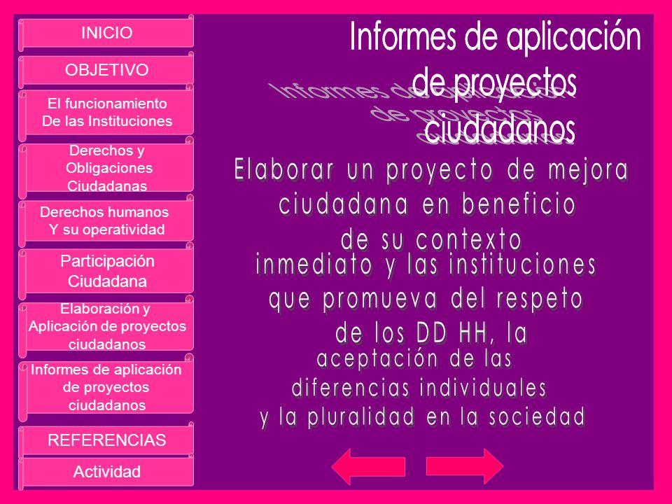 Informes de aplicación de proyectos ciudadanos