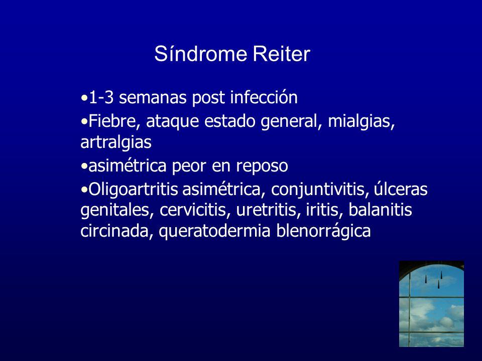 Síndrome Reiter 1-3 semanas post infección