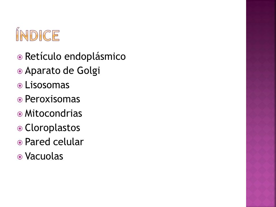 Índice Retículo endoplásmico Aparato de Golgi Lisosomas Peroxisomas