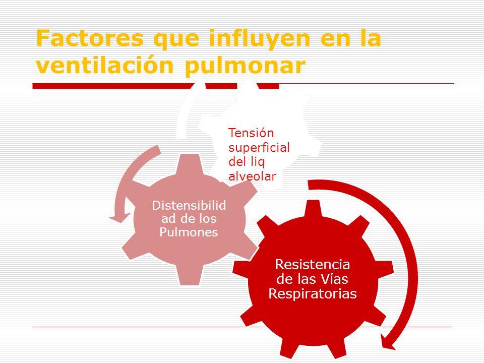 Factores que influyen en la ventilación pulmonar