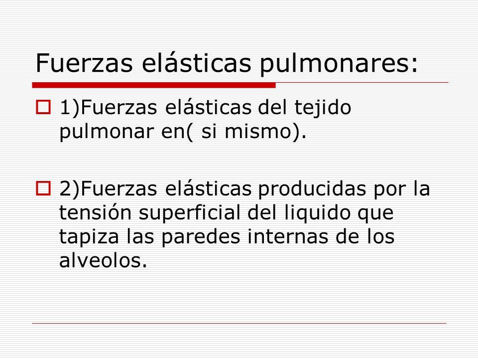 Fuerzas elásticas pulmonares: