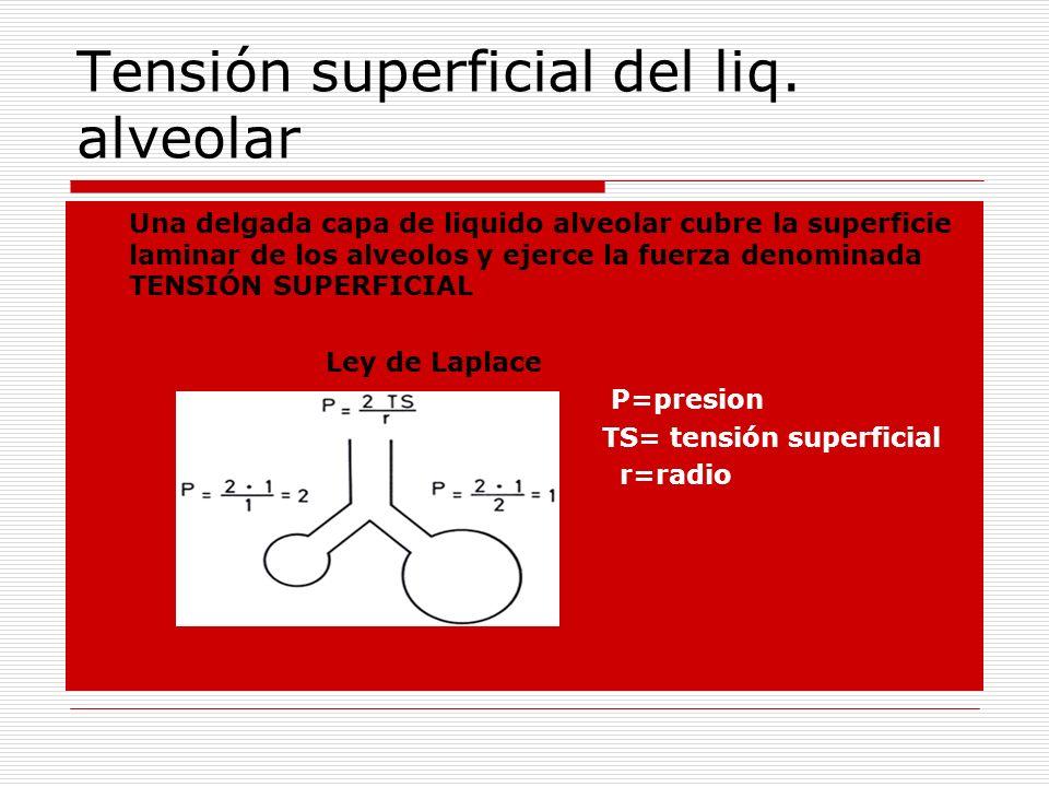 Tensión superficial del liq. alveolar