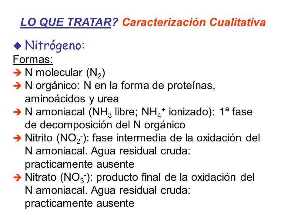 Nitrógeno: LO QUE TRATAR Caracterización Cualitativa Formas: