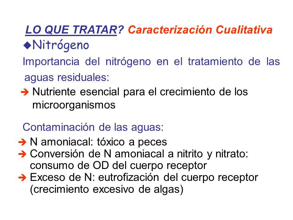 Nitrógeno LO QUE TRATAR Caracterización Cualitativa