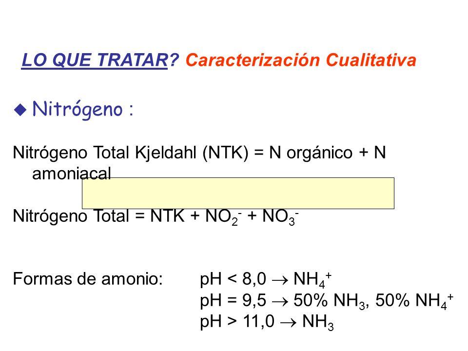 Nitrógeno : LO QUE TRATAR Caracterización Cualitativa
