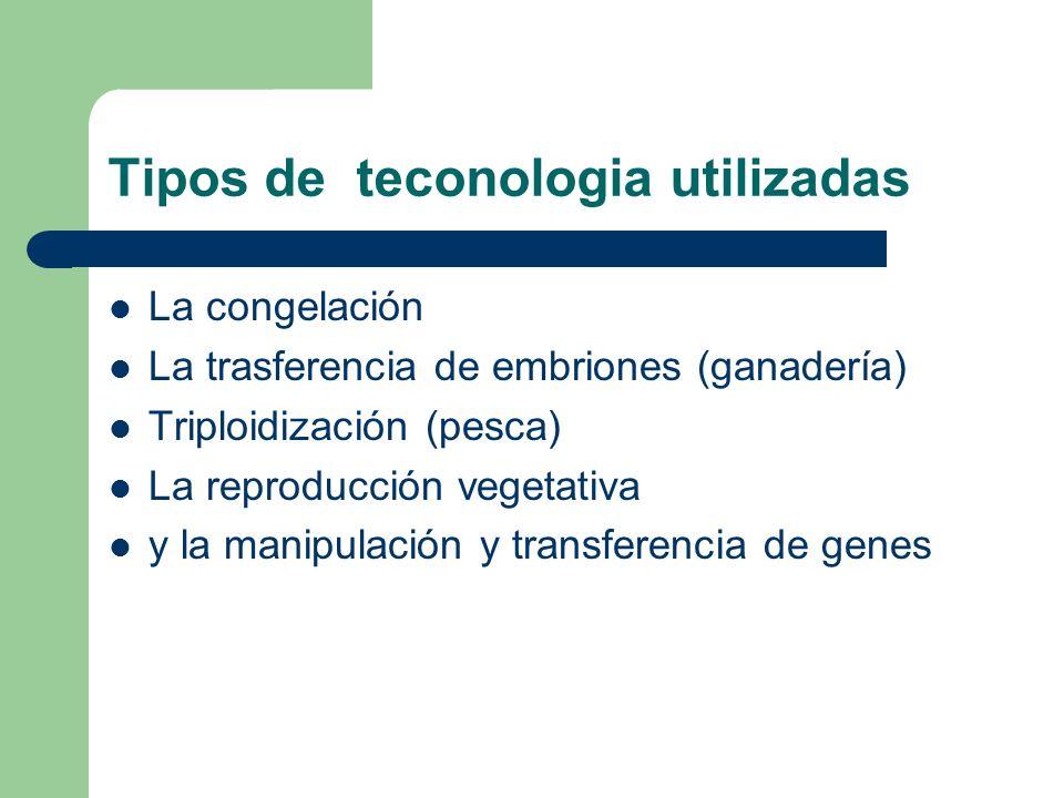 Tipos de teconologia utilizadas