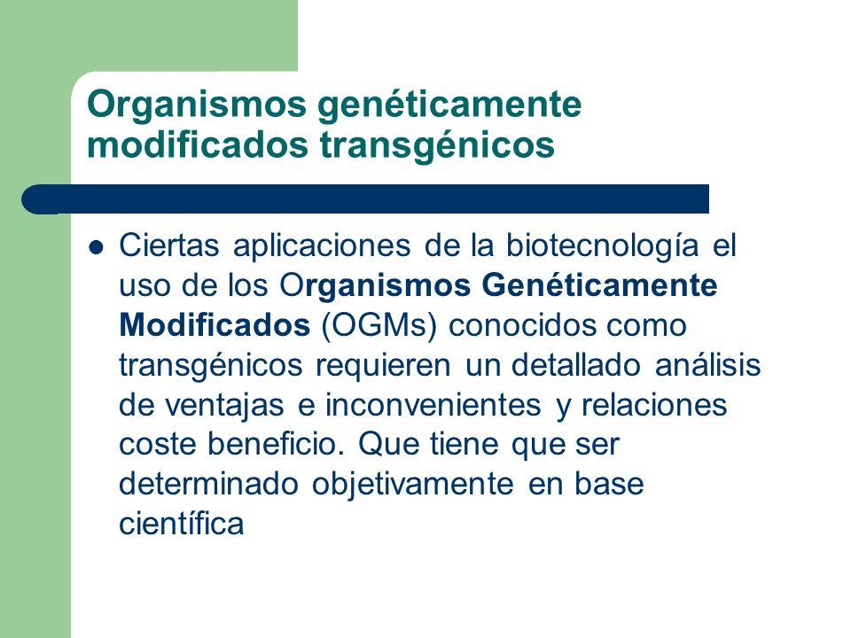 Organismos genéticamente modificados transgénicos