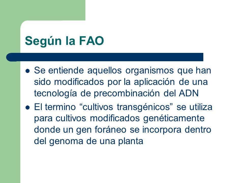 Según la FAO Se entiende aquellos organismos que han sido modificados por la aplicación de una tecnología de precombinación del ADN.