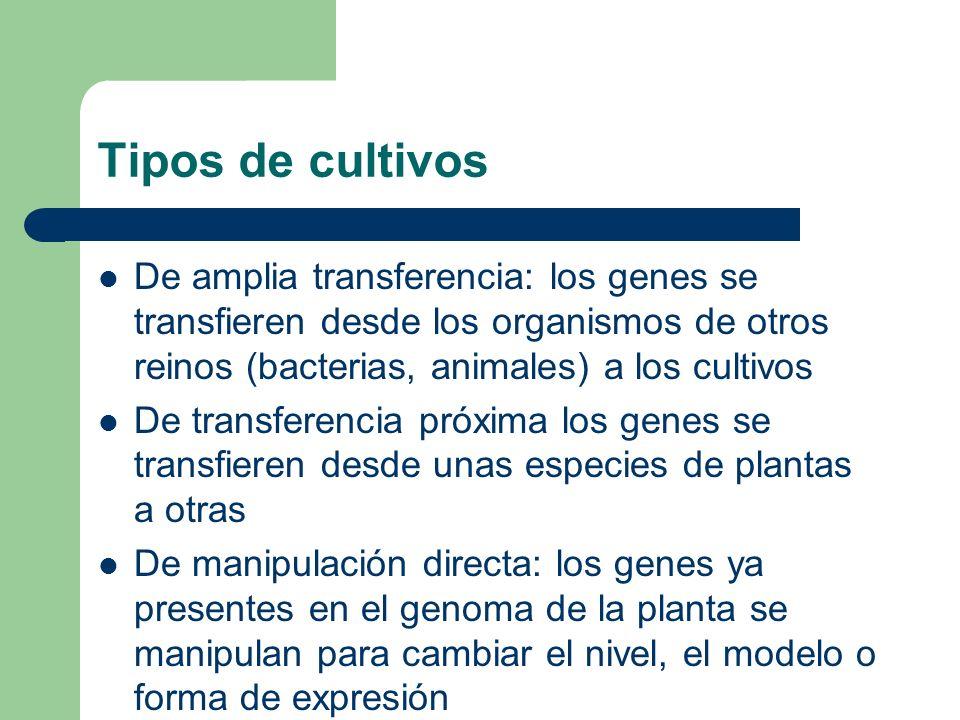 Tipos de cultivosDe amplia transferencia: los genes se transfieren desde los organismos de otros reinos (bacterias, animales) a los cultivos.